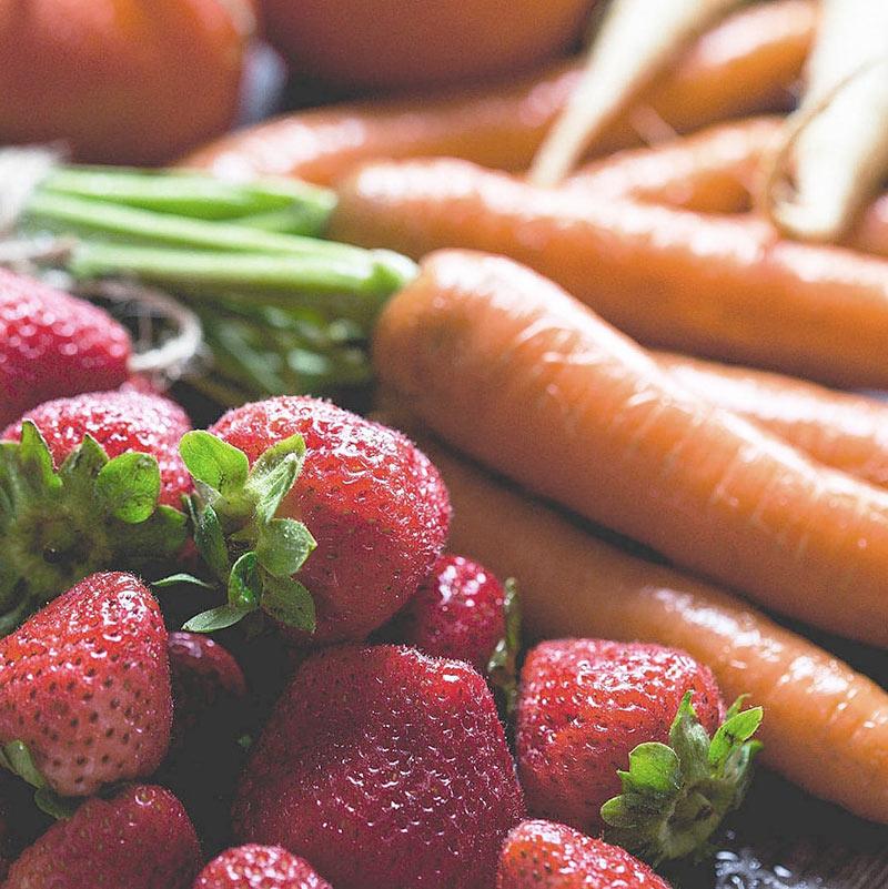 bewusste ernaehrung anja muckle q - Ernährung